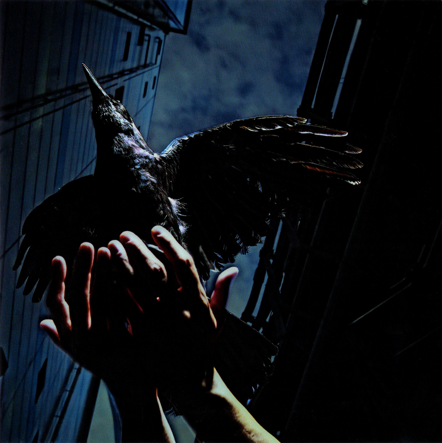 9mm parabellum bullet『Cold Edge e.p.』の高画質ジャケット画像