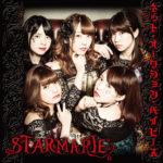 STARMARIE (スターマリー)『ネット・オークション・ベイビーズ』type-Aジャケット 高画質ジャケット画像