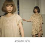 cosmic-box