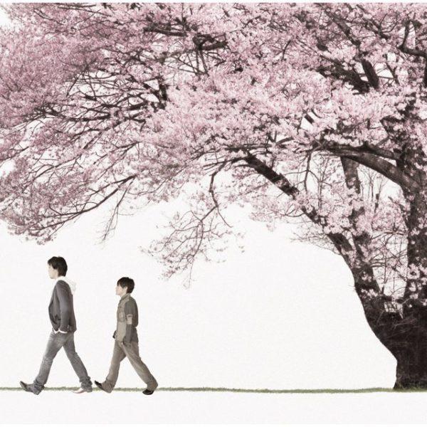 コブクロ メジャー12thシングル『桜』(Spring Package)