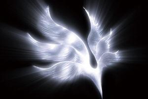 BUMP OF CHICKEN (バンプ・オブ・チキン) 5thアルバム『orbital period』(2007年12月19日発売) 高画質ジャケット画像