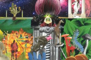 the Apples in Stereo (ジ・アップルズ・イン・ステレオ) 5thアルバム『NEW MAGNETIC WONDER (ニュー・マグネティック・ワンダー)』(日本盤) 高画質CDジャケット画像