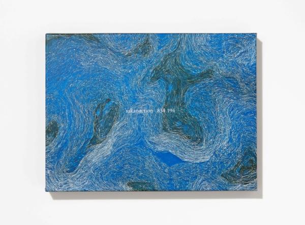 サカナクション (Sakanaction) 7thアルバム『834.194 (はちさんよんいちきゅうよん)』(完全生産限定盤) 高画質CDジャケット画像