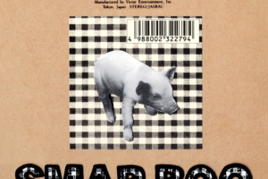SMAP (スマップ) リミックスアルバム『SMAP BOO Remix Hardcore Idol Machine』(初回限定盤) 高画質CDジャケット画像