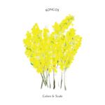 KONCOS (コンコス) 3rdアルバム『Colors & Scale (カラーズ アンド スケール)』(2016年7月20日発売) 高画質CDジャケット画像 (ジャケ写)