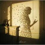 Aimer (エメ) 16thシングル『I beg you / 花びらたちのマーチ / Sailing』(2019年1月9日発売) 高画質CDジャケット画像 (ジャケ写)